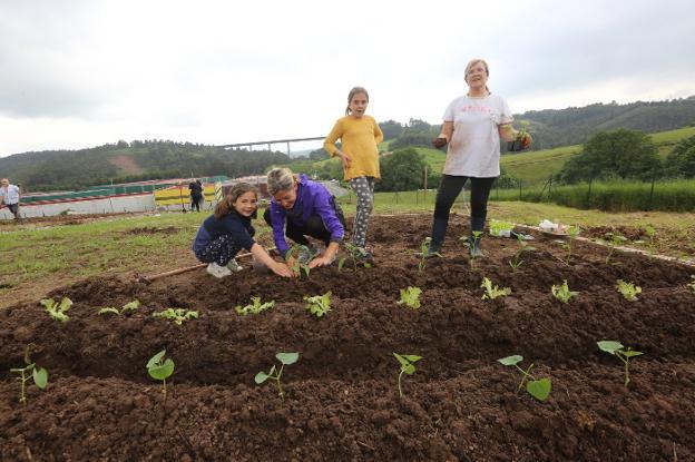 Algunos de los adjudicatarios de los nuevos huertos urbanos ya han plantado su primera cosecha. / MARIETA
