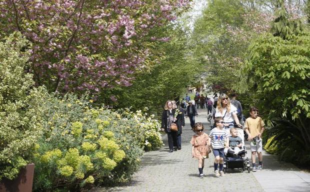 Los Vigilantes Del Botanico De Gijon Piden Al Ayuntamiento Que