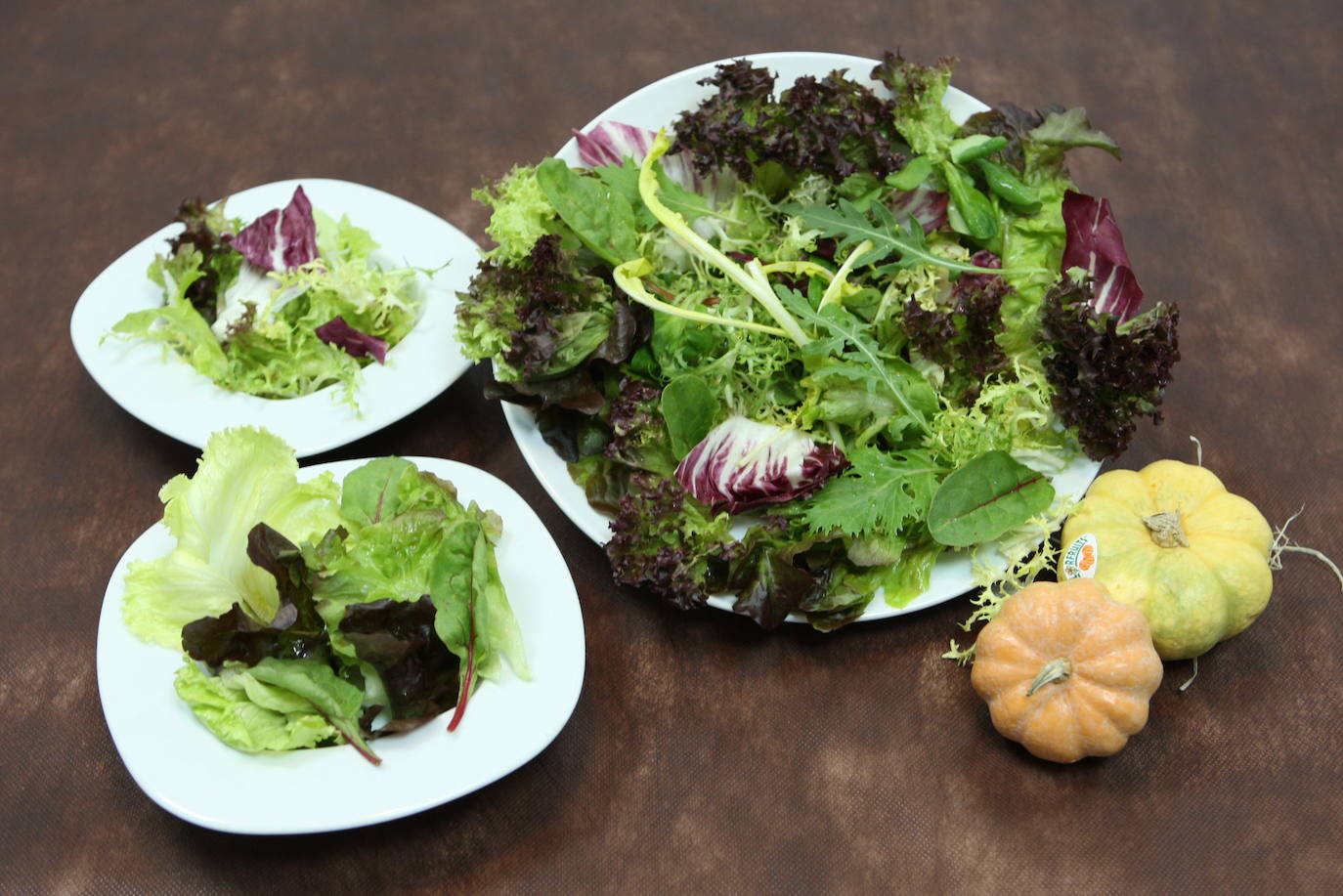 ensalada de rucula variedades