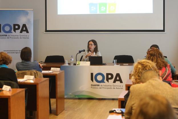Paz Orviz, directora general de Calidad Ambiental del Principado, fue una de las ponentes. / MARIETA