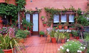 Casas Con Encanto Natural El Comercio
