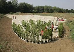 El Botanico Ya Ve Crecer Su Laberinto El Comercio